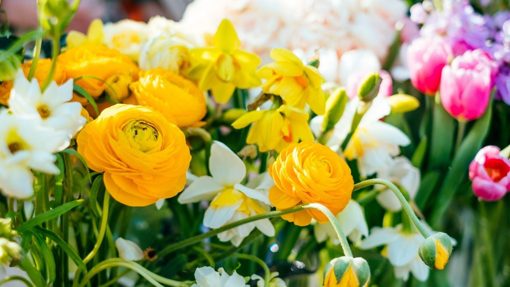 เทรนด์สีช่อดอกไม้สดสวย ๆ สุดฮิตในปี 2021